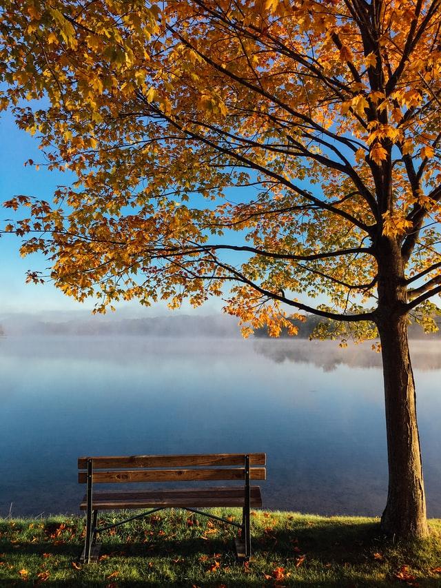 sentencje aforyzmy o jesieni