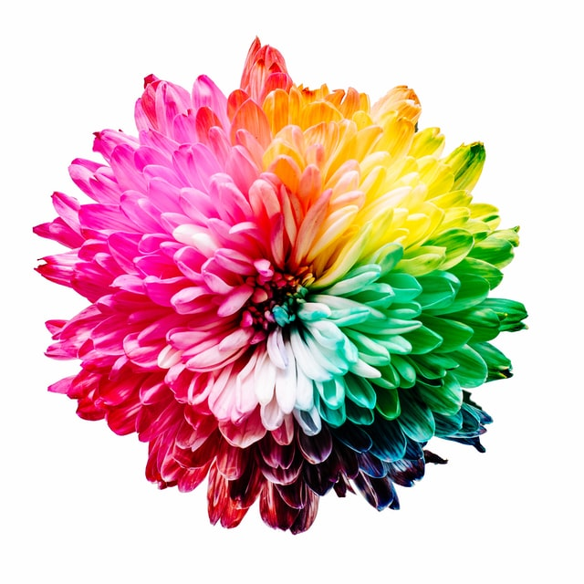cytaty o kolorach