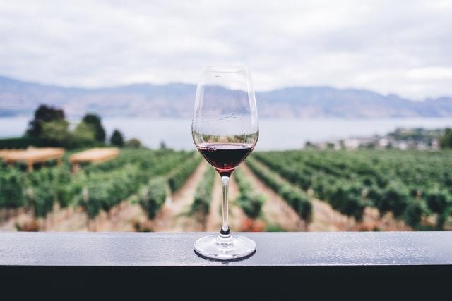 wino cytaty